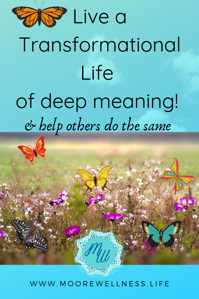 Live a life of transformational deep meaning, and help others do the same.  Butterflies in field of flowers.
