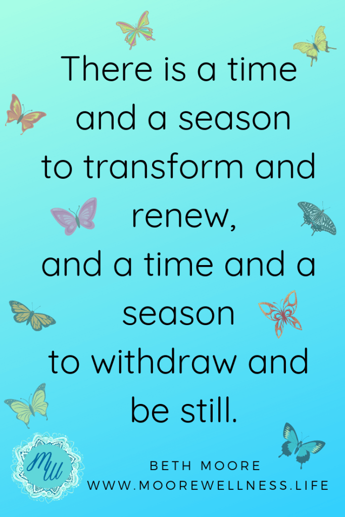 Time and season to transform and renew, time and season to withdraw and be still. colorful flying butterflies
