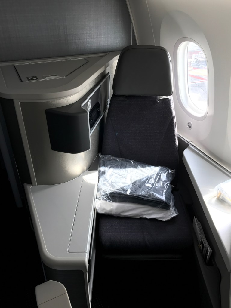 American Airlines Business Class Seat 6L