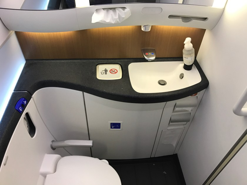 Review: American Airlines Business Class 787-8 Paris To ...