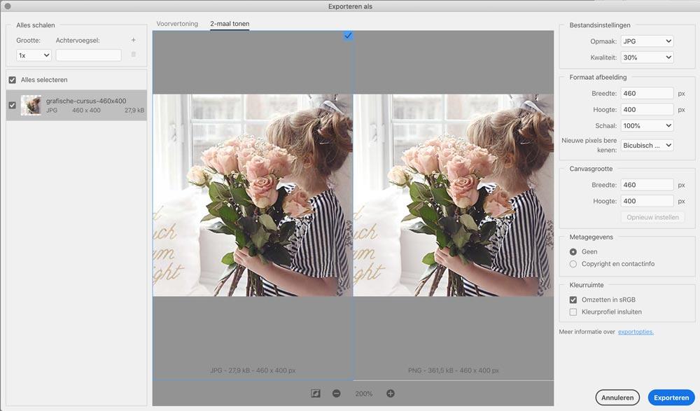Foto's optimaliseren voor het web