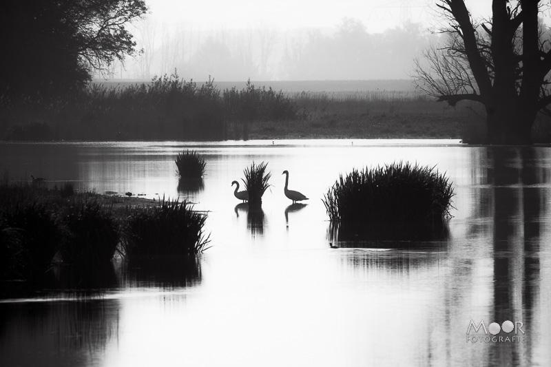 Water fotograferen - landschappen