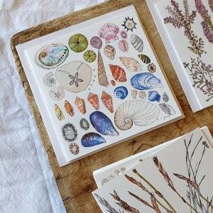 CoralBloom Stationery Fynbos Art Prints