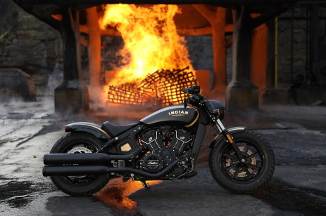 GOLD & BLACK JACK DANIEL'S LIMITED EDITION SCOUT BOBBER