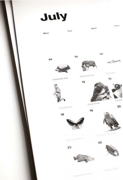calendario 2013 bbc almost extinct calendar