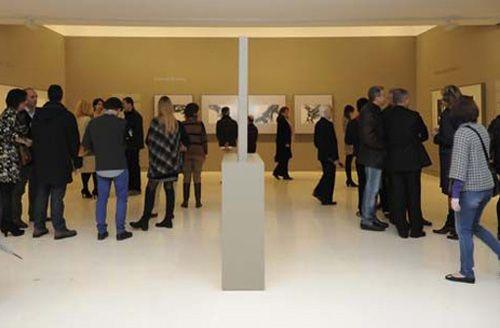 propuestas educativas museo esteban vicente