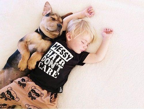 Theo y Beau durmiendo