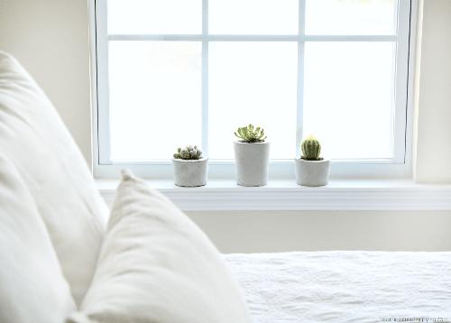 plantas en dormitorio blanco