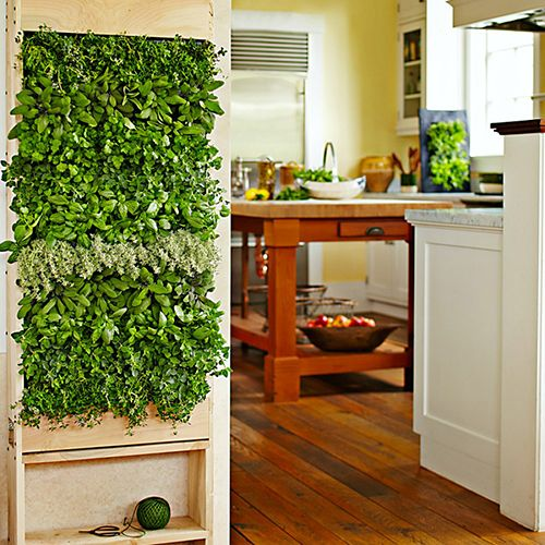 jardin interior pared decoracion plantas verdes ideas tendencias plantas aereas