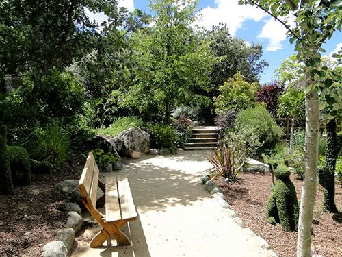 el bosque encantado madrid parque jardin museo botanico