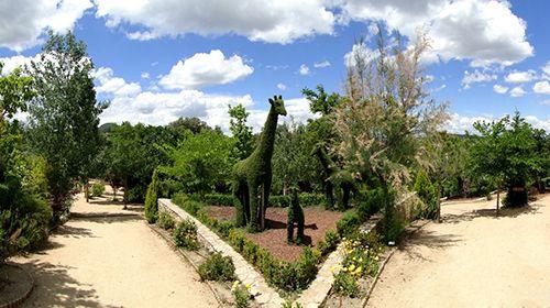 jirafas esculturas vegetales jardin museo botanico el bosque encantado madrid