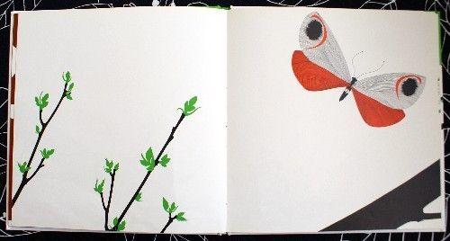enzo mari manzana mariposa libro ilustracion