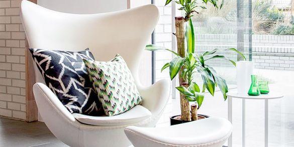 salon living room amara decor