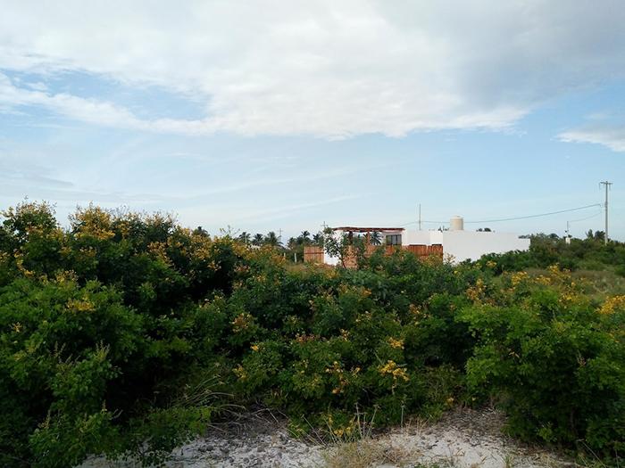 Vista lejana exterior completa de la Casa Taty Airbnb en México