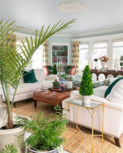 Decoración británica colonial en salón grande y luminoso con varias plantas