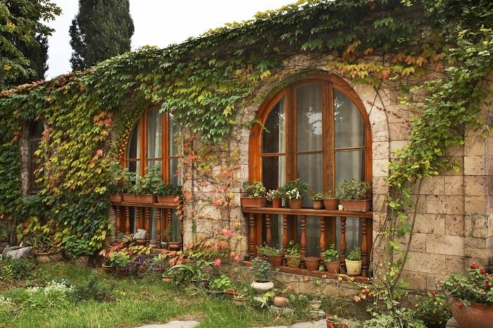 zona rural con una casa con flores y plantas