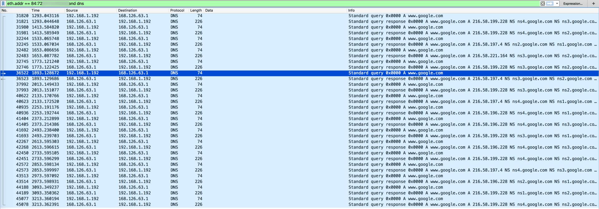 인터넷 상태 확인을 위한 DNS Query