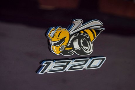 "2019 Dodge Challenger R/T Scat Pack 1320 ""Angry Bee"" Logo. (Dodge)"