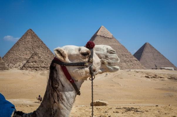 Is Egypt Safe