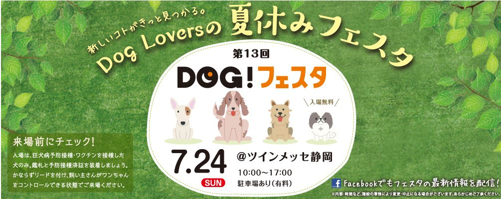 dogfes