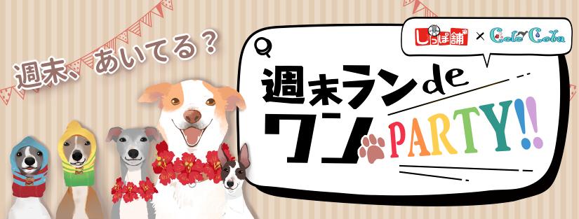 しっぽ舗ドッグラン 週末ランdeワンパーティー モラキジドッグ