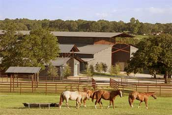 Horse Ranch - Real Life Inspirational Stories of Success
