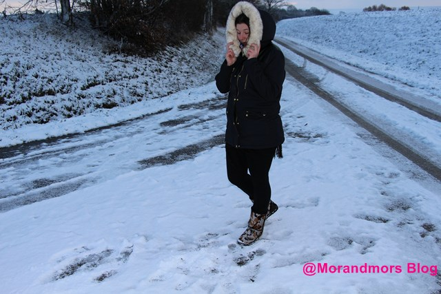 Ode à la neige Mors 3