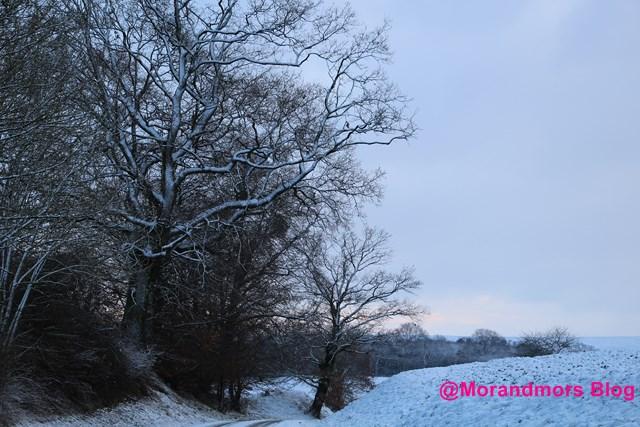Ode à la neige Mors 5