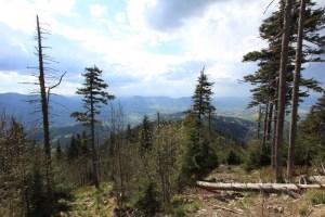 Temeno Lysé hory (1324 m).