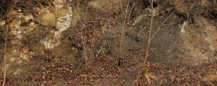 Výchozy uhelných slojí na již. svahu Landeku.