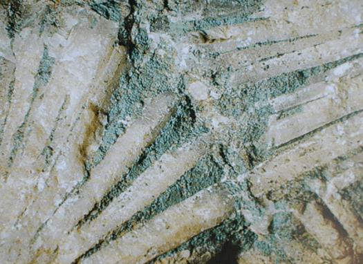 Seladonit od Kojetína u Nového Jičína.