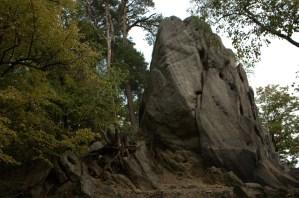 Výchozy skal jsou vázány zejména na lukovské vrstvy soláňského souvrství. PP Břestecká skála.