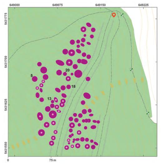 Schéma lokality Strážovice