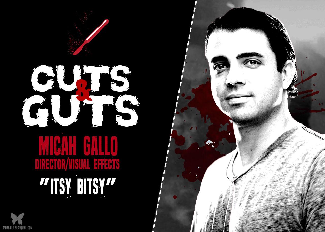 Micah Gallo Itsy Bitsy