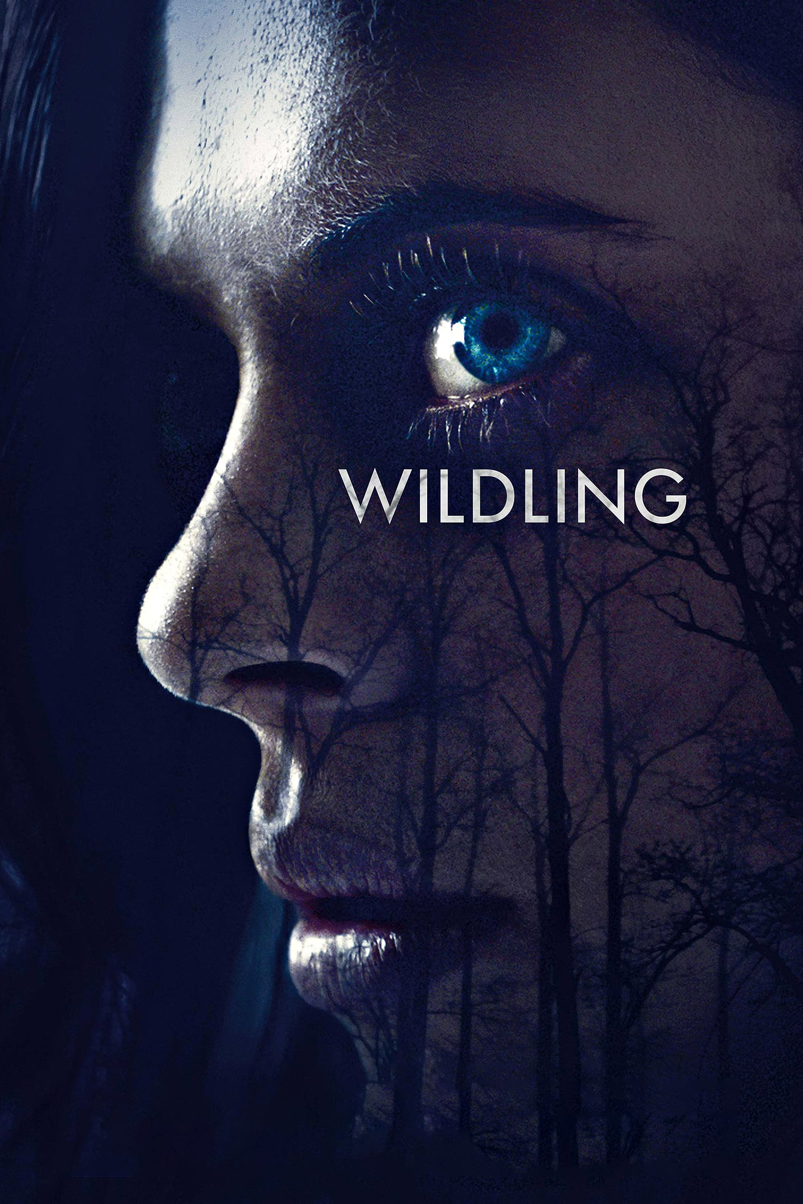 """Poster for the movie """"Wildling"""""""