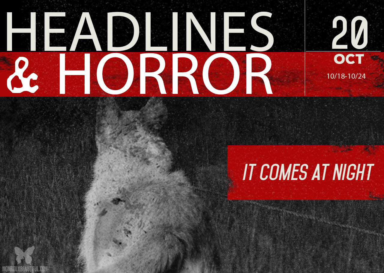 Headlines and Horror It Comes at Night