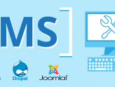 Choosing Between Drupal, Joomla and WordPress For Your CMS
