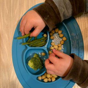 Plato alimentaciíon BlW de tres compartimientos