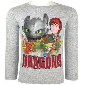 How to train your dragon longsleeve