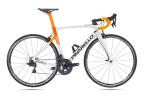 PRINCE 717 White/Orange