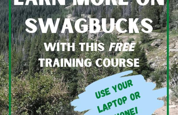 Swagbucks training