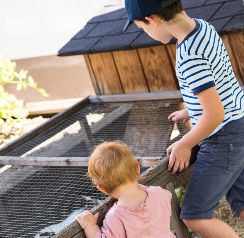 Zwei-Kinder-in Hasenstall-blickend