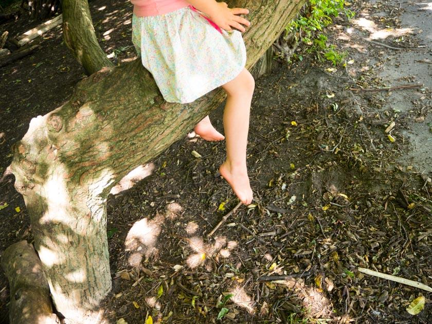 Amsterdam-mit-Kindern-Mädchen-auf-Baumstamm