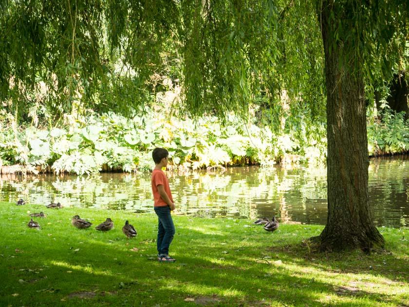 Amsterdam-mit-Kindern-Junge-in-Park