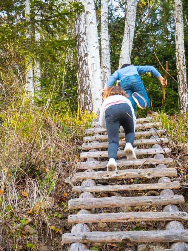 Familienurlaub am Bauernhof Kinder klettern Leiter hinauf