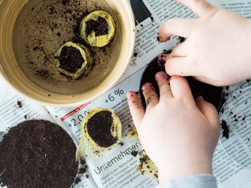 Sprossengarten mit Kindern_Junge verteilt Erde