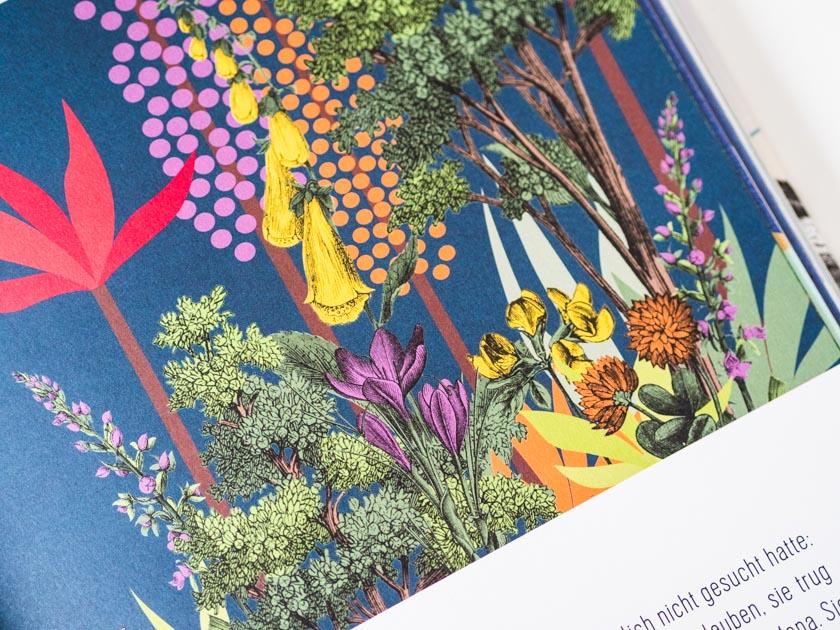 Kinderbuch Asagan_Kinderbuch Illustration