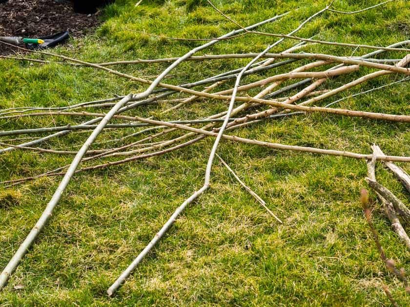 Weidentipi mit Kindern bauen_Weidenruten