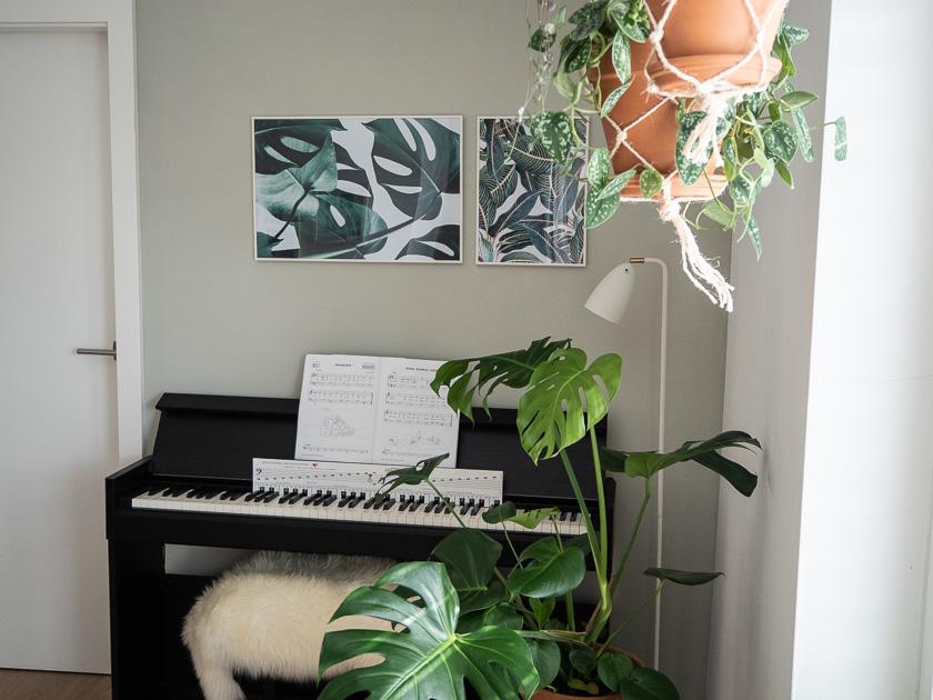 Urban Jungle Trend an Wand_Bilder