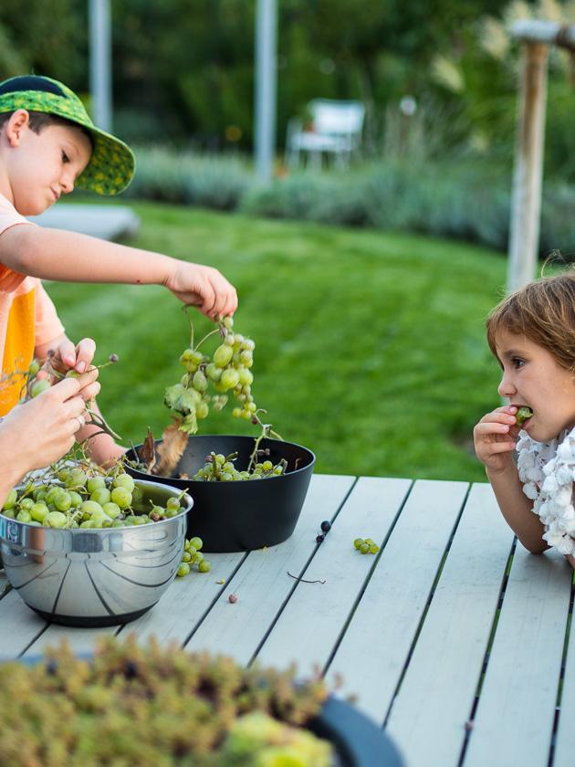 Als Mama fit bleiben_Obst und Gemüse im Garten anbauen